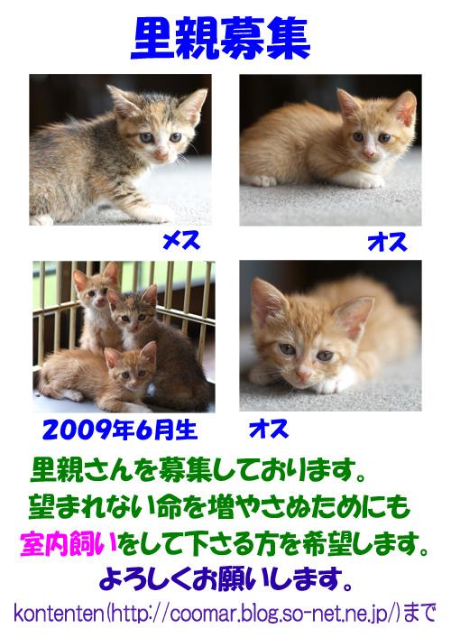 ポスター090719.jpg