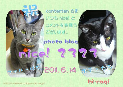 so-net623054.jpg