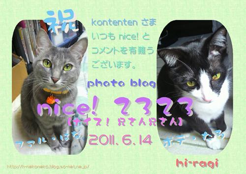so-net623056.jpg
