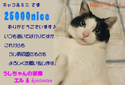 so-net623070.jpg