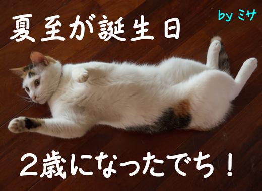 so-net6232776.jpg