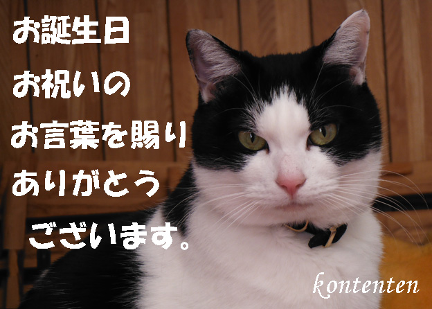 so-net6233346.jpg