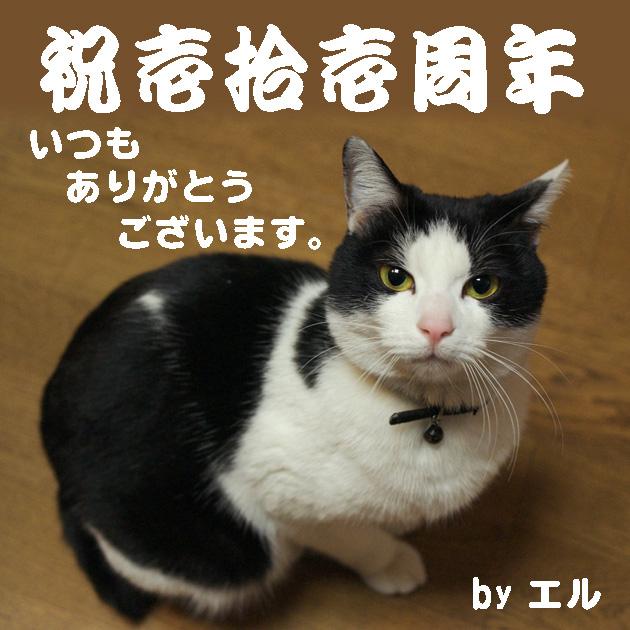 so-net6233497.jpg