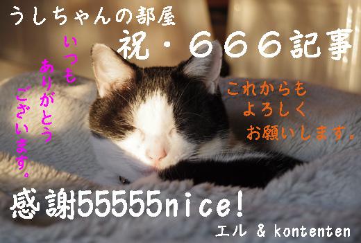 so-net6232696.jpg